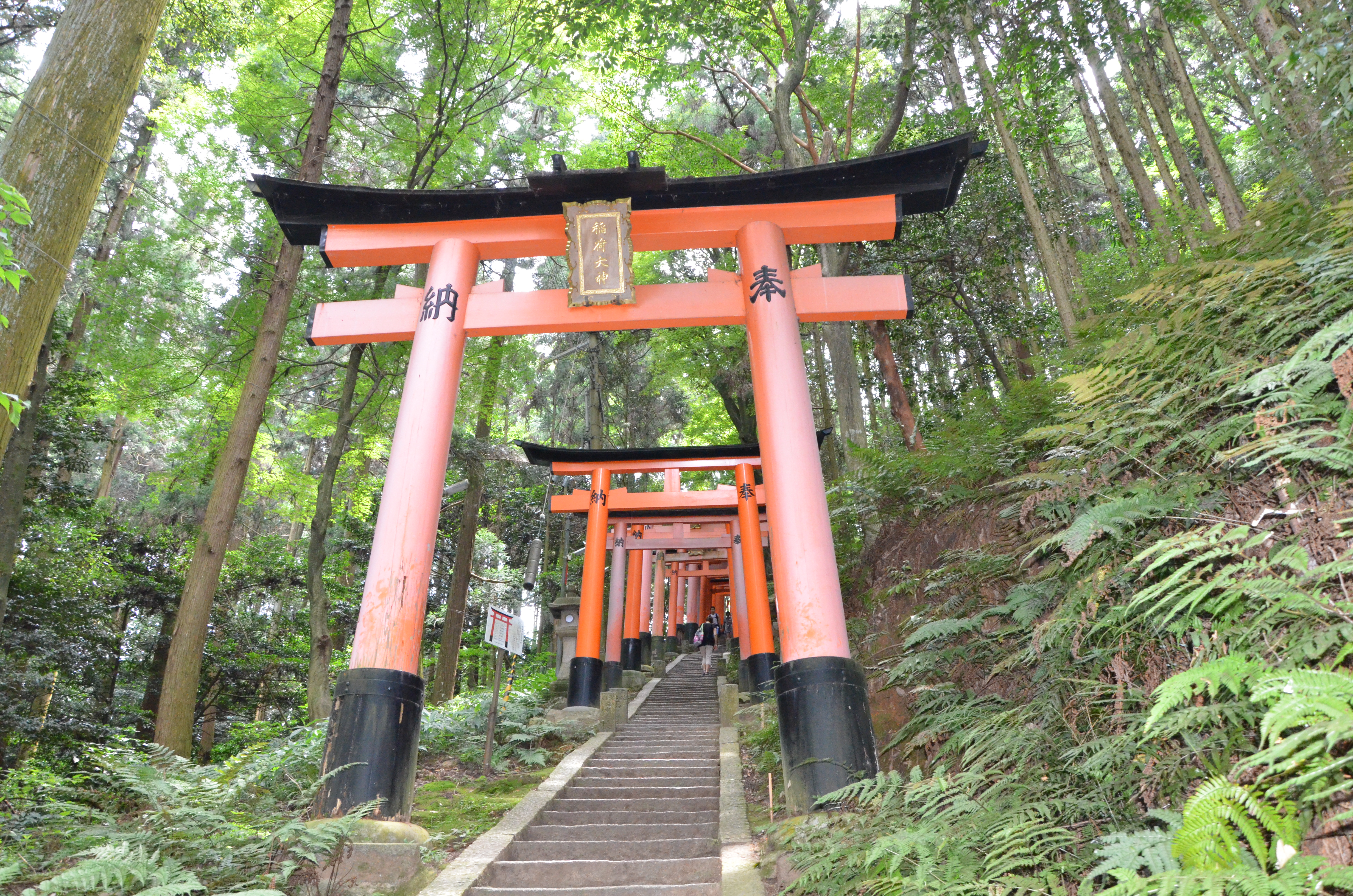 10-bonnes-raisons-aller-au-Japon-DEPAYSANT-maxitrips