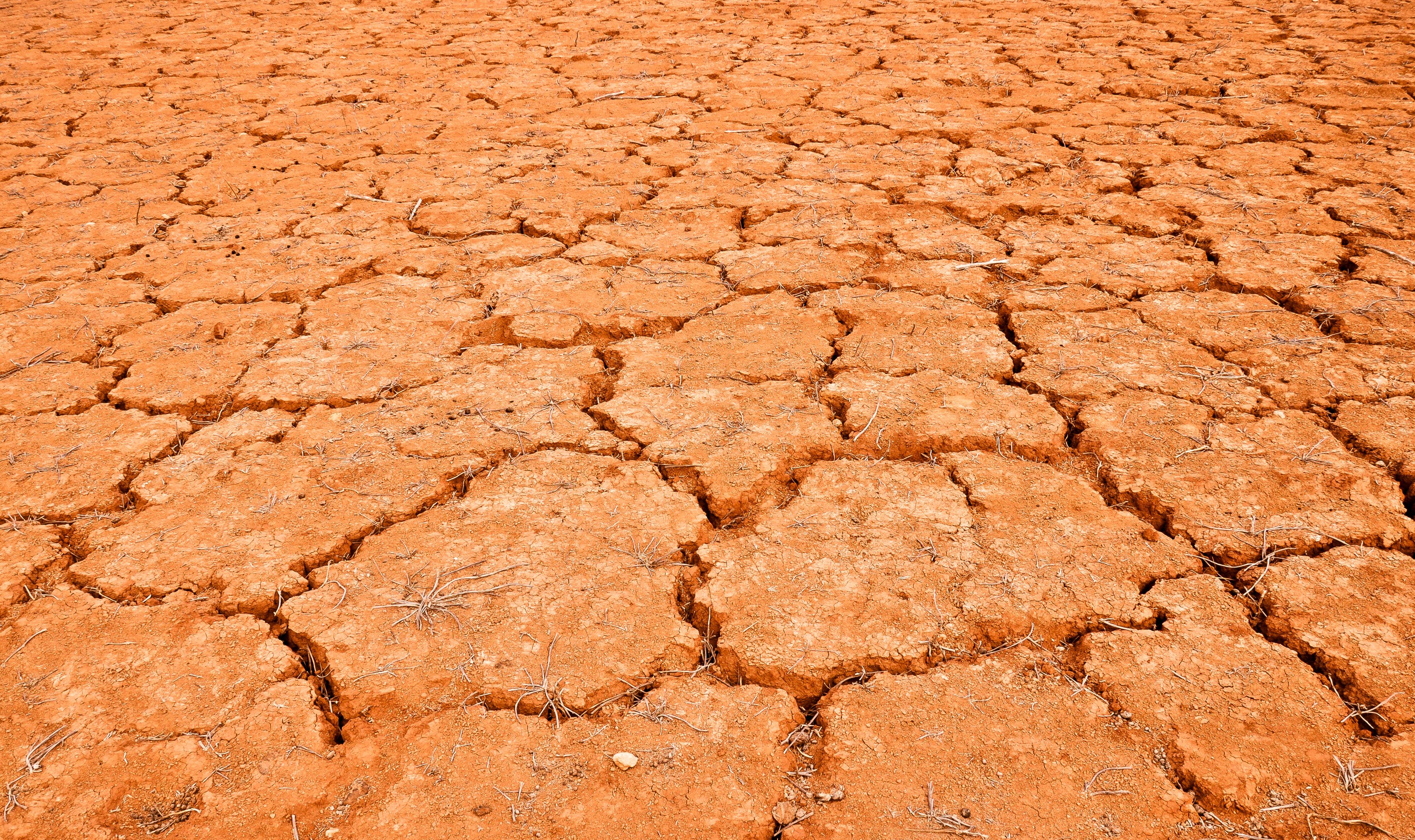 peau-sèche-deshydratee-maxitrips